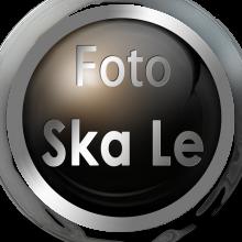 Ska Le